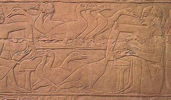 foie-gras-bas-relief-egypte