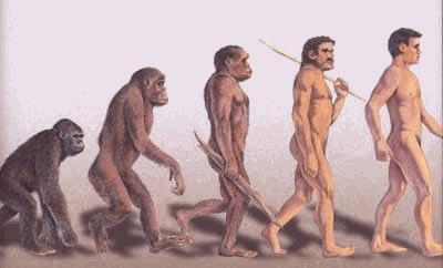 évolution-de-l-homme-de-cromagon