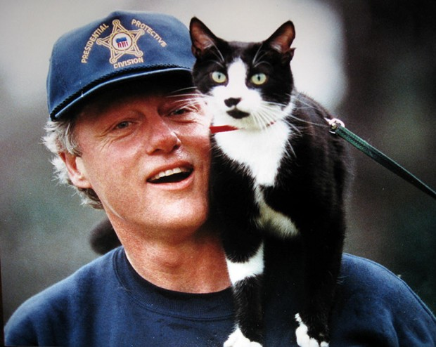 Bill-Clinton-Socks-chat-sur-sonépaule