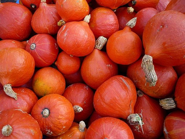 potimarron-pumpkin