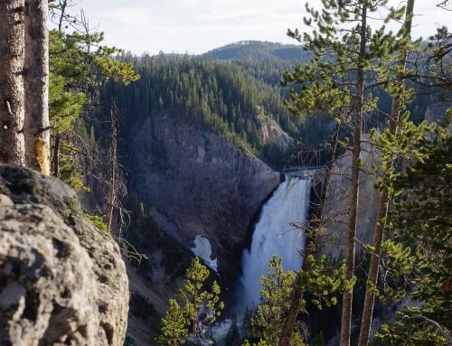 Yellowstone-Falls-Yellowstone-National-Park