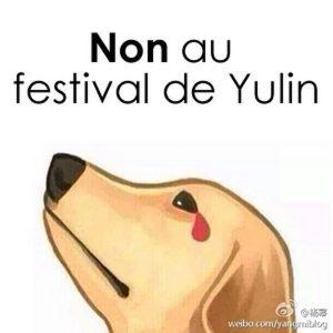 petition-contre-festival-yulin-viande-chiens-chats-a-la-une