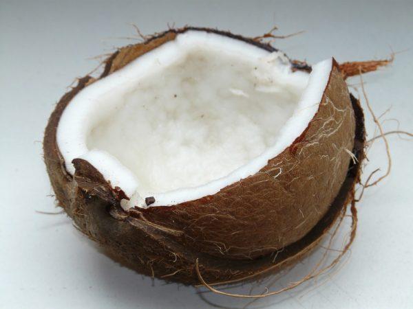 coconut-lait-de-coco