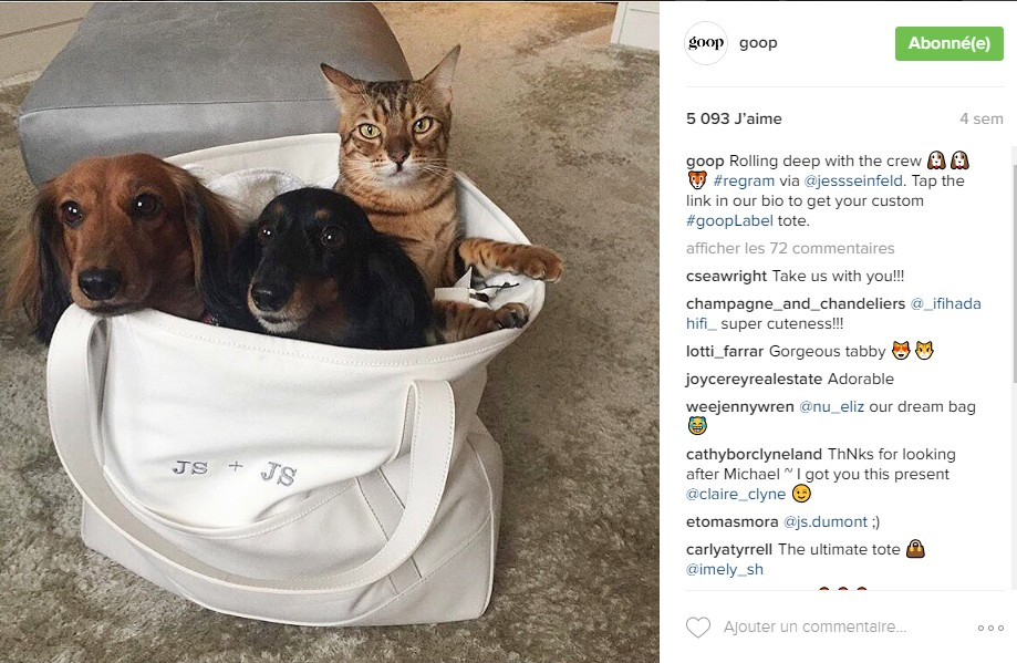 instagram-goop-chiens-chats-tote-bag-hashtags