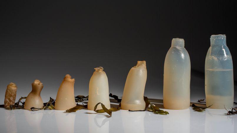 bouteille-biodégradable-ari-jonsson