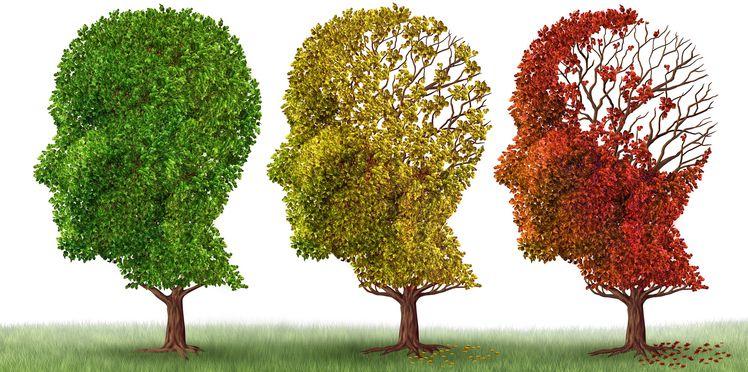 vieillissement-du-cerveau
