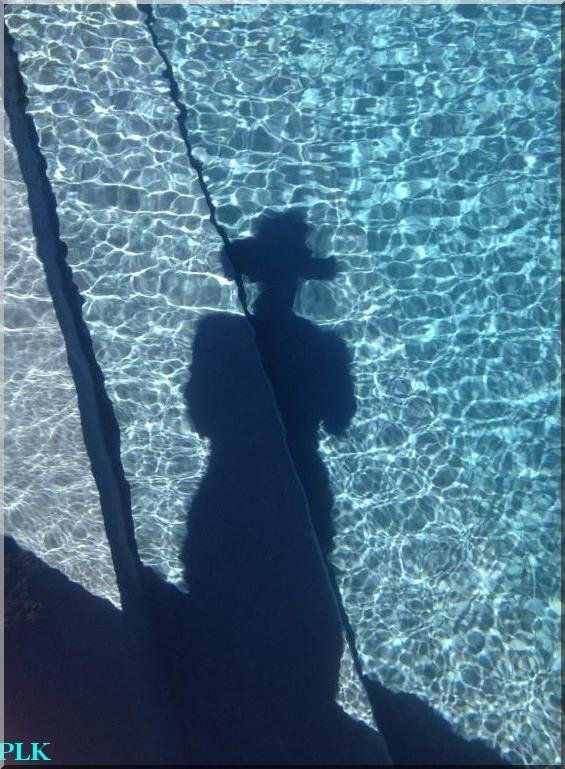 piscine-bleue