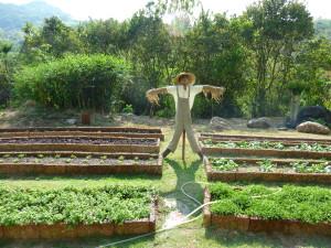 épouvantail-Six-senses-yao-noi-jardin-bio
