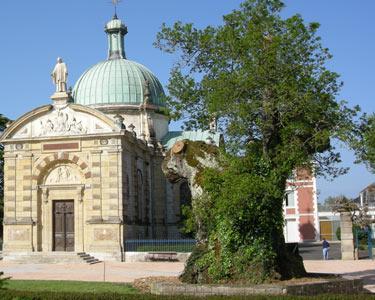 chêne-millénaire-saint-Vincent-de-paul