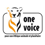 halte aux tests de toxicité animaux