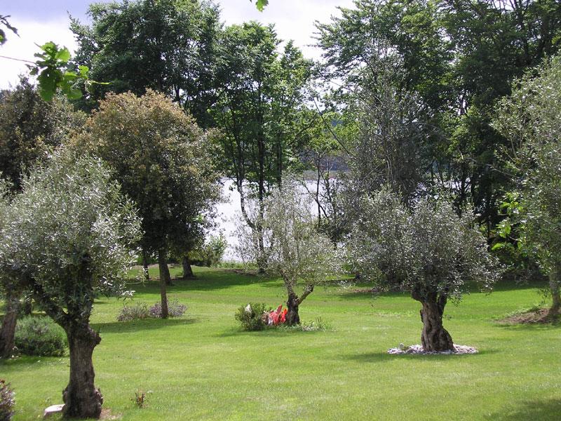 jardin-mémoire