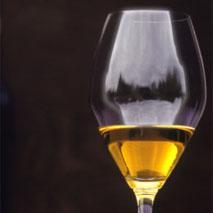 vin-vient-froid-vin de glace