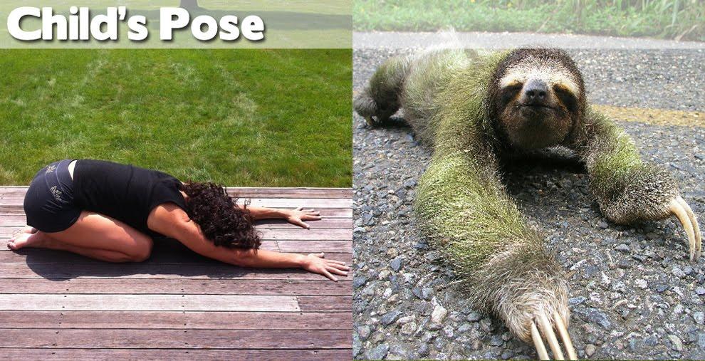 balasana-yoga-posture-de-l-enfant