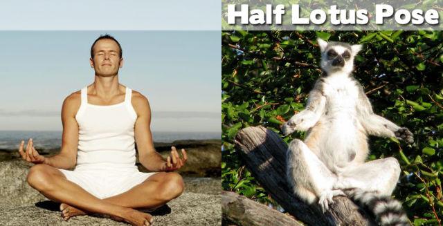 demi-lotus-yoga