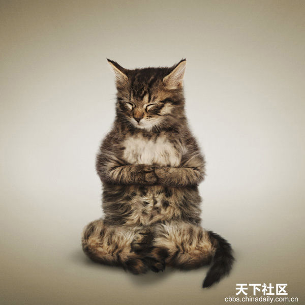 posture-méditation