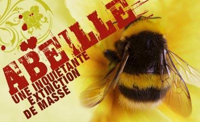 gros-plan-sur-une-abeille