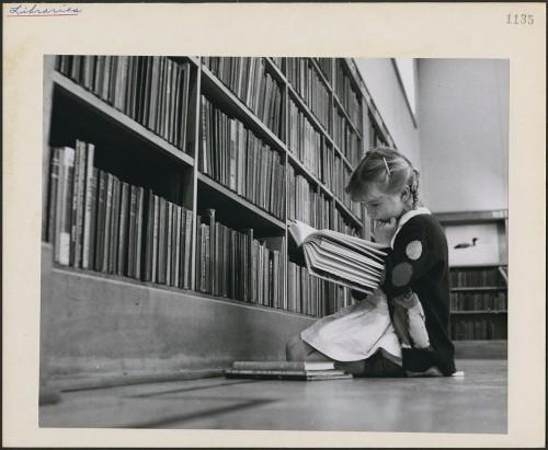 petite-fille-qui-lit-dans-une-bibliothèque-rat-de-bibliothèque