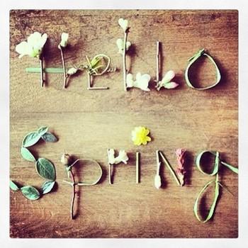 printemps-hello-spring-avec-des-feuilles