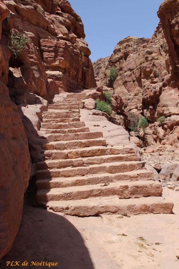 Pétra-escalier-vers-el-Deir