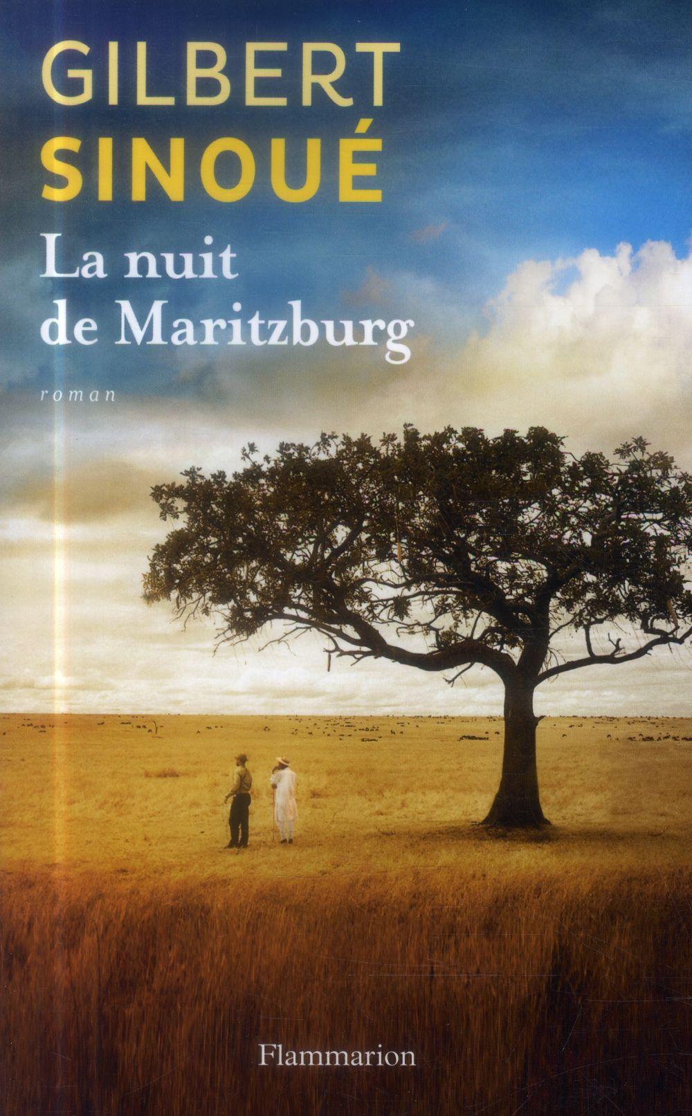 sinoué-la-nuit-à-Maritzburg-gandhi