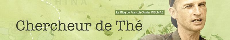 bannière-chercheur-de-thé-FX-Delmas