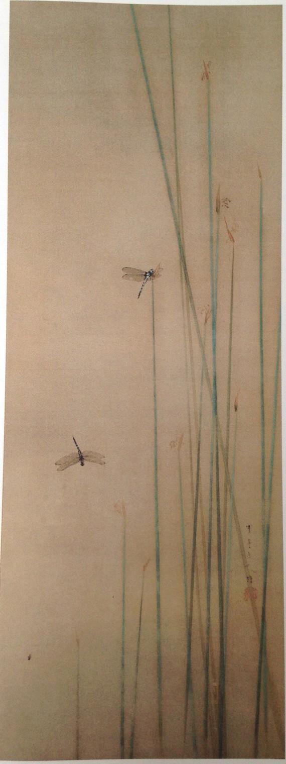 prêles-et-libellules-de-seitei