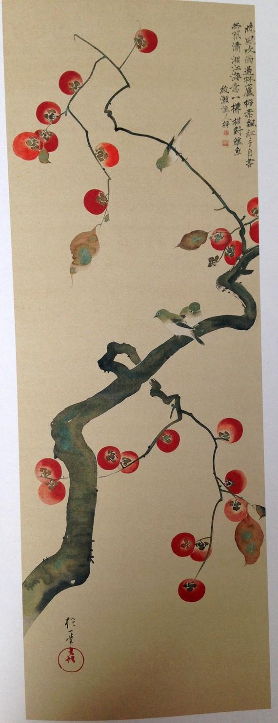 Trois-mejiro-sur-un-arbre-à-kakis