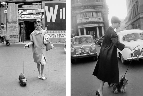 Audrey-Hepburn-à-Rome-avec-son-chien