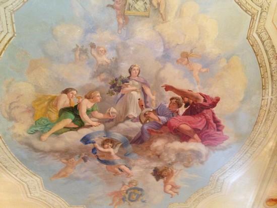 château-de-Pizay-plafond-du-salon