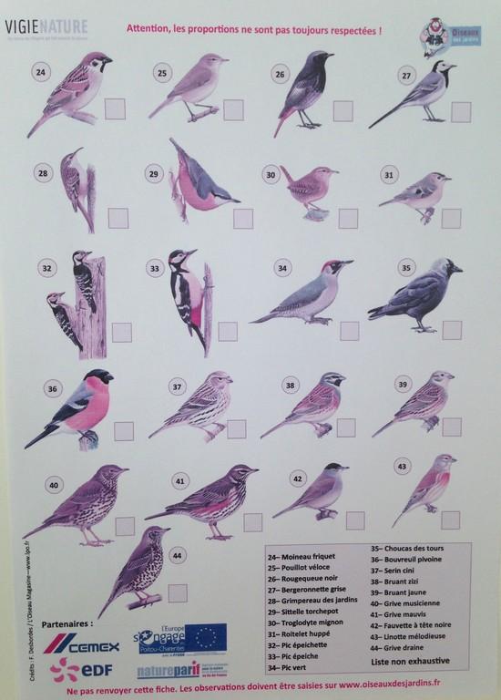 résultat-comptage-des-oiseaux