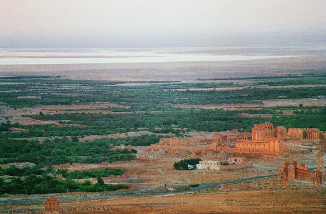 palmyre-vue-aérienne