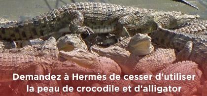 peta-alligator-birkin-hermès