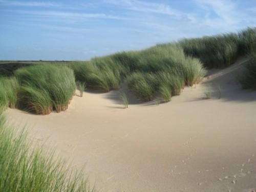 dune-naturelle-dune-marchand-Réserve-Naturelle-Nationale