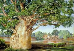 African-Baobab-Tree-in-the-Princess's-Garden-at-Tanjore-India-Marianne-North