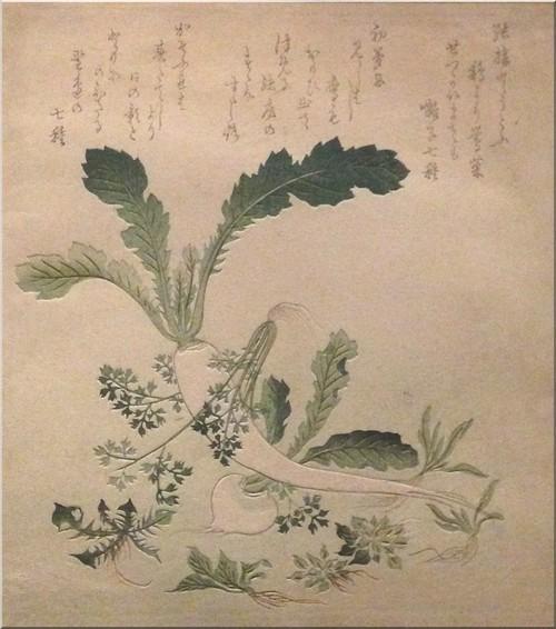 surimono-radis-jeunes-pousses-gakutei