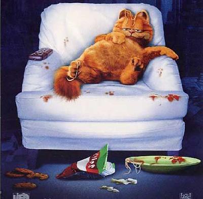 chat-qui-regarde-des-séries-obèse