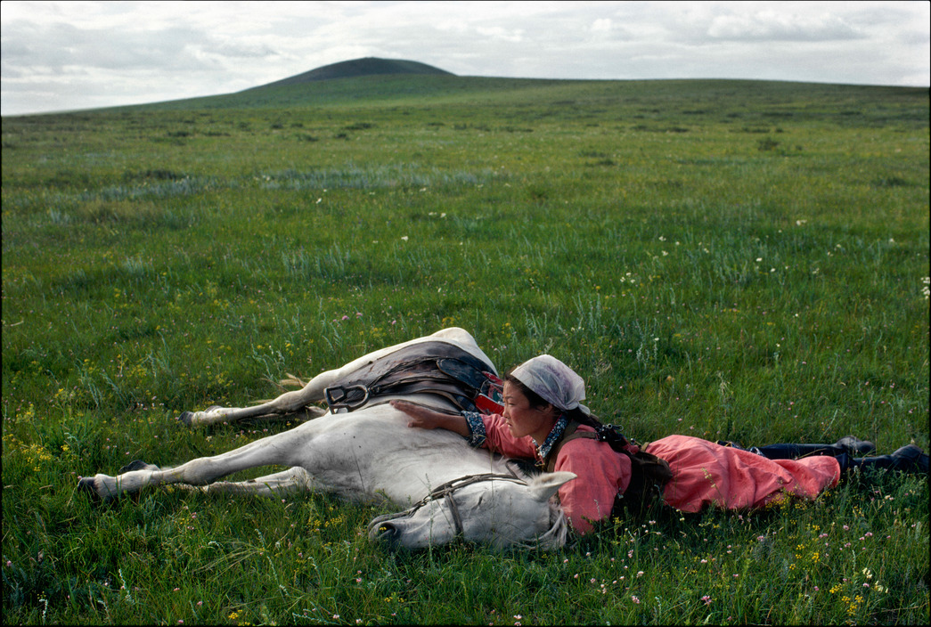 eve-arnold-china-horses-fgirl