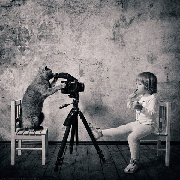 andy-prokh-Amazing-friendship-of-a-little-girl-with-cat-