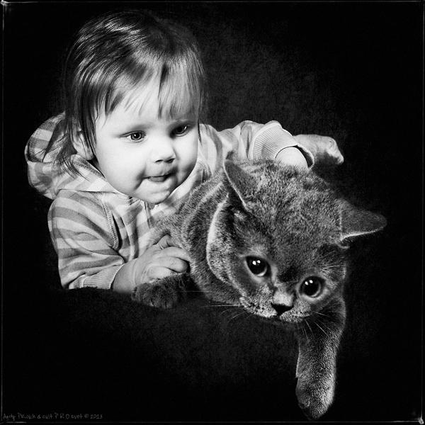 andy-prokh-cat