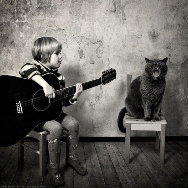 andy prokh-chat-katherine-guitare