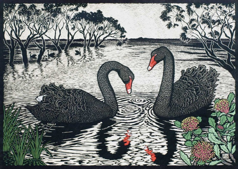black-swan-linocut-rachel-newling