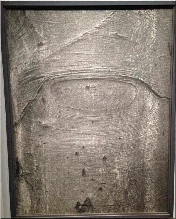jeff-wall-shapes-on-the-tree