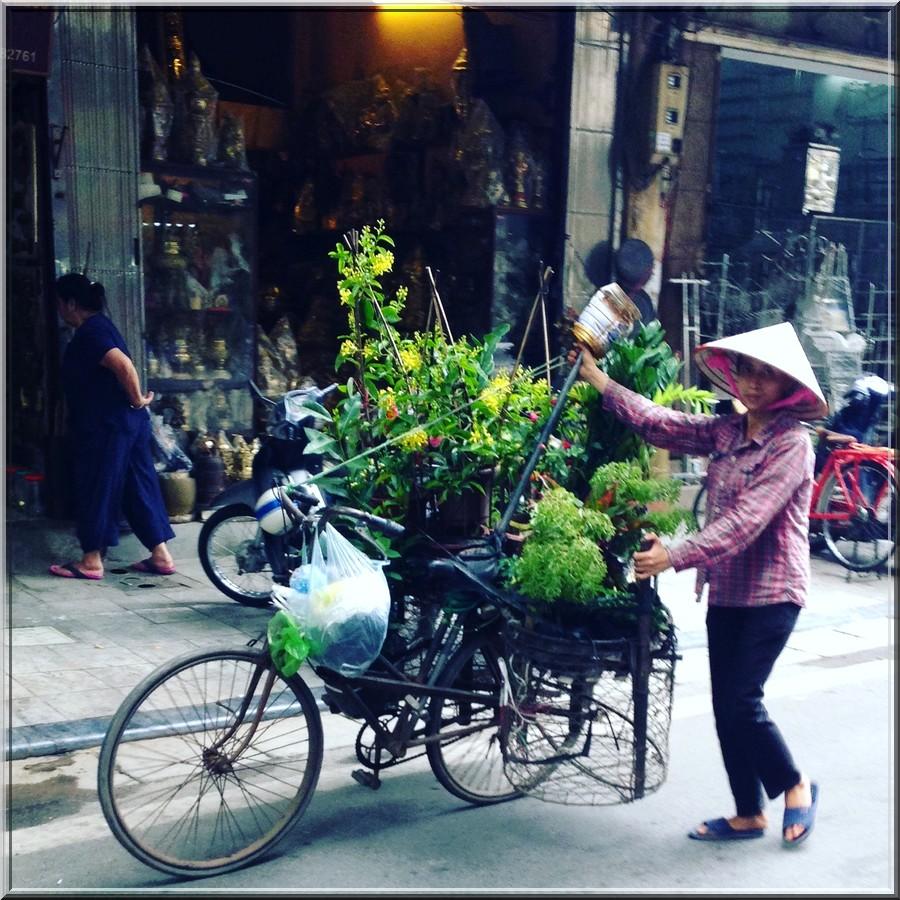hanoï-vietnam-vendeuse-ambulante-de-rue