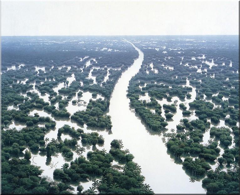 Tomas-Sanchez-Inondation-de-la-rivière-Aguas-Blancas-
