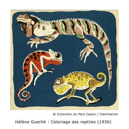 quertik-reptiles-pere-castor