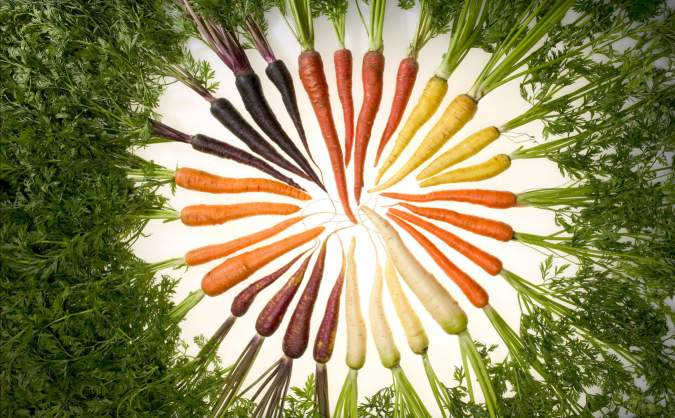 cri de la carotte