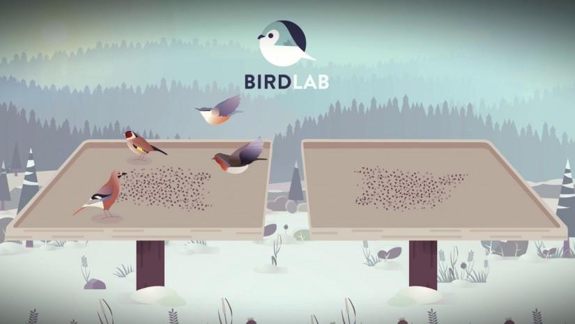 Appli-BirdLab-compter les oiseaux
