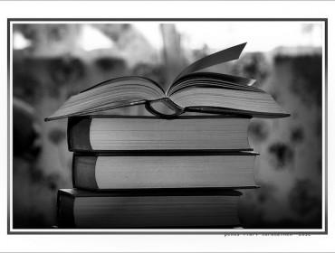 dans-la-bibliothèque