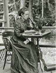 Elizabeth Gertrude Knight Britton (1857-1934)