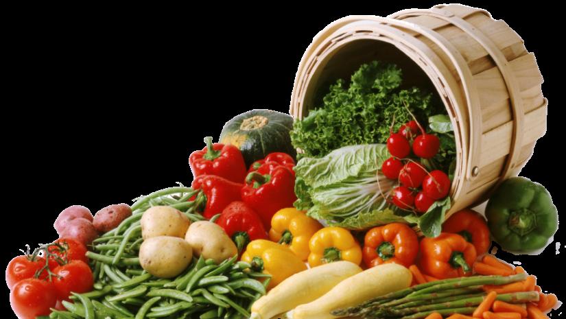 légumes- carottes-aubergine-courgette